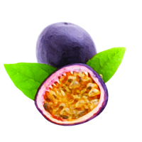 Suncare Ingredient Image: Organic Passiflora Edulis (Passion) Fruit Oil