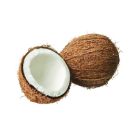 Suncare Ingredient Image: Fractionated Coconut Oil
